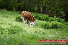 20190511-hirschbachtal-classic-samstag-0051-2834-2