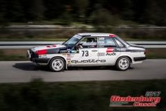 Robert Frank,Audi 90 quattro Rallye,BJ:  1984, 2200 ccm,Startnummer :  073
