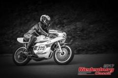 Walter Arlt,Yamaha TZ,BJ:  1976, 350 ccm,Startnummer :  229
