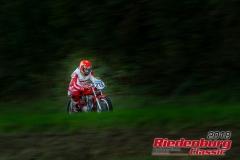 Mario Ioannoni, Ducati, BJ: 1965, 250 ccm, StNr: 215