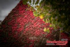 20190927-riedenburg-classic-2019-freitag-0056-41