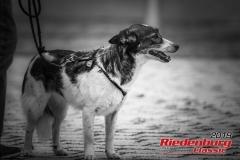 20190927-riedenburg-classic-2019-freitag-0057-41