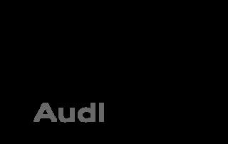 Link zu www.audi.de